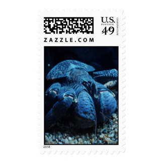 Giant Lobster Postage Stamps