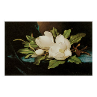 Giant Magnolias, Heade, Vintage Victorian Flowers Poster