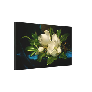Giant Magnolias on a Blue Velvet Cloth Gallery Wrapped Canvas