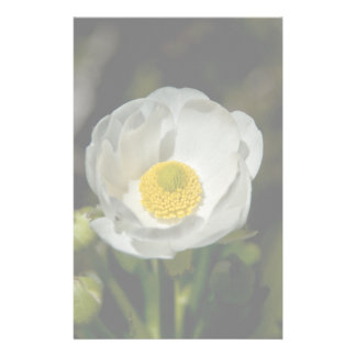 Giant Mountain Buttercup Stationery