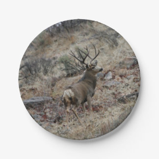 Giant mule deer buck paper plate