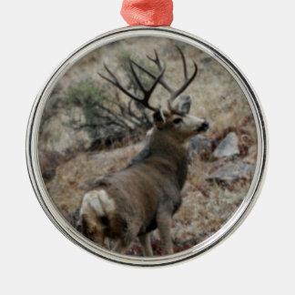 Giant mule deer buck round metal christmas ornament