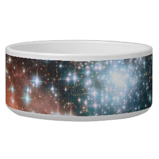 Giant Nebula Star Cluster Space Pet Water Bowls