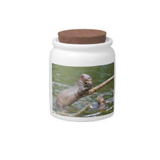 Giant otter eating a fish candy dish
