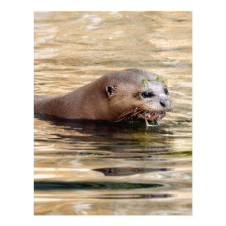 Giant otter swimming in water letterhead