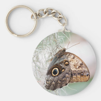 Giant Owl Butterfly Keychain
