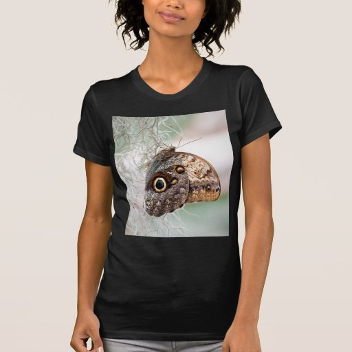 Giant Owl Butterfly Tshirt