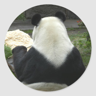 giant-panda3-10x10 round stickers