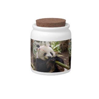 giant-panda3-12x9 candy jars