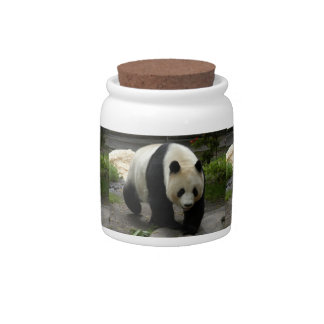 giant-panda-12x9 candy dishes