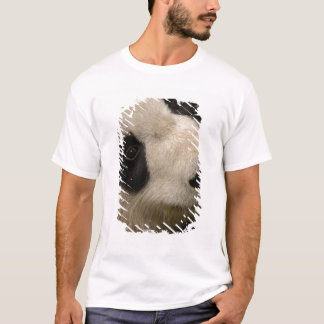 Giant panda (Ailuropoda melanoleuca) Family: 2 T-Shirt