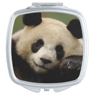 Giant panda Ailuropoda melanoleuca) Family: 4 Compact Mirror