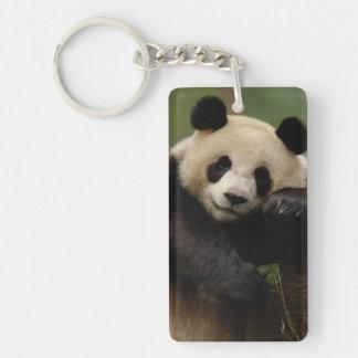 Giant panda Ailuropoda melanoleuca) Family: 4 Double-Sided Rectangular Acrylic Keychain