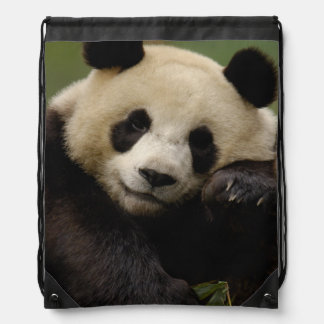 Giant panda Ailuropoda melanoleuca) Family: 4 Drawstring Bag