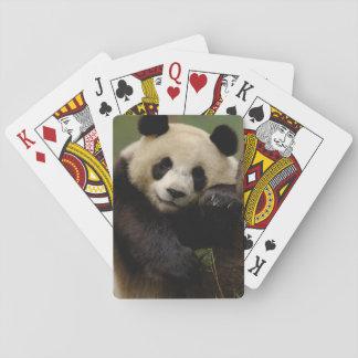 Giant panda Ailuropoda melanoleuca) Family: 4 Playing Cards