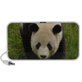 Giant panda (Ailuropoda melanoleuca) Family: 4 Portable Speaker