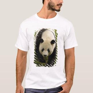 Giant panda (Ailuropoda melanoleuca) Family: 4 T-Shirt