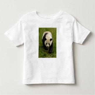 Giant panda (Ailuropoda melanoleuca) Family: 4 Toddler T-shirt
