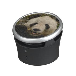 Giant panda Ailuropoda melanoleuca) Family: 5 Bluetooth Speaker