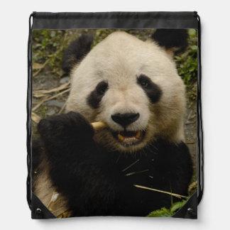 Giant panda Ailuropoda melanoleuca) Family: 5 Drawstring Bag
