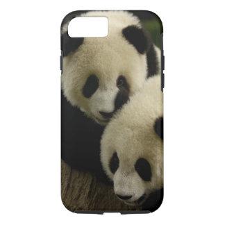 Giant panda (Ailuropoda melanoleuca) Family: 5 iPhone 8/7 Case
