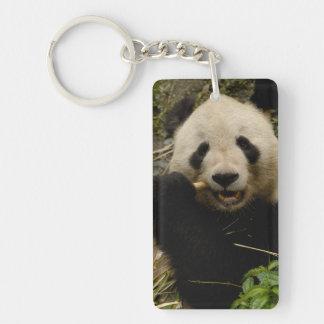 Giant panda Ailuropoda melanoleuca) Family: 5 Double-Sided Rectangular Acrylic Keychain