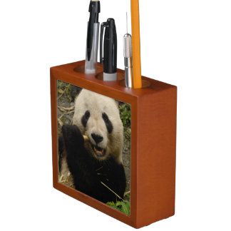 Giant panda Ailuropoda melanoleuca) Family: 5 Pencil Holder