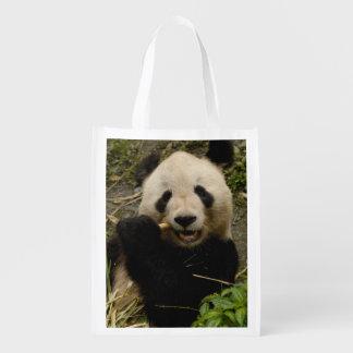 Giant panda Ailuropoda melanoleuca) Family: 5 Reusable Grocery Bag