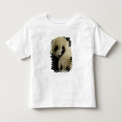 Giant panda (Ailuropoda melanoleuca) Family: 5 T-shirt