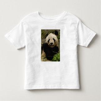 Giant panda Ailuropoda melanoleuca) Family: 5 Toddler T-shirt