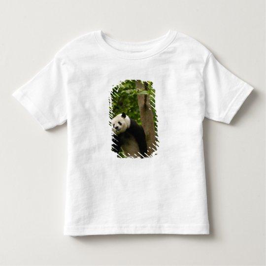 Giant panda Ailuropoda melanoleuca) Family: 6 Toddler T-shirt