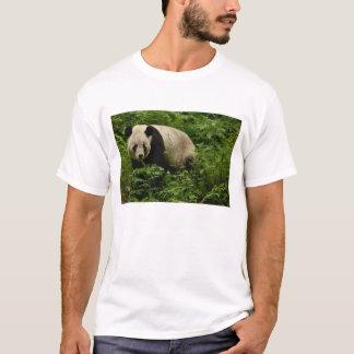 Giant panda (Ailuropoda melanoleuca) Family: 7 T-Shirt