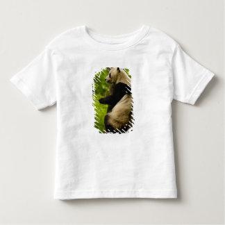 Giant panda Ailuropoda melanoleuca) Family: Toddler T-shirt