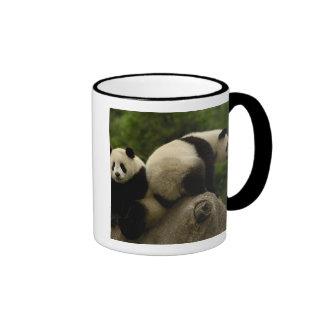 Giant panda babies Ailuropoda melanoleuca) 10 Mug