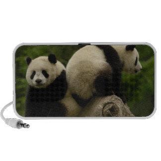 Giant panda babies Ailuropoda melanoleuca) 10 Notebook Speakers