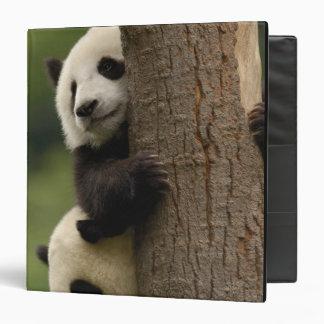 Giant panda babies Ailuropoda melanoleuca) 2 3 Ring Binders