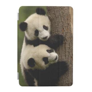 Giant panda babies Ailuropoda melanoleuca 2 iPad Mini Cover