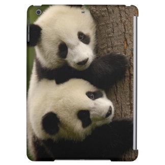 Giant panda babies (Ailuropoda melanoleuca) 2 iPad Air Case