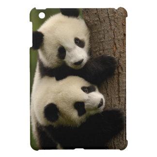 Giant panda babies (Ailuropoda melanoleuca) 2 Cover For The iPad Mini
