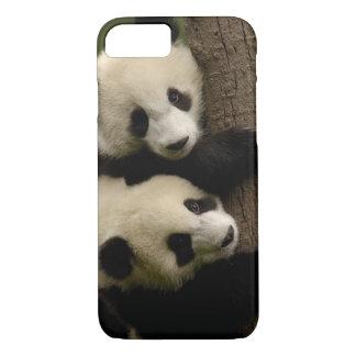 Giant panda babies (Ailuropoda melanoleuca) 2 iPhone 8/7 Case