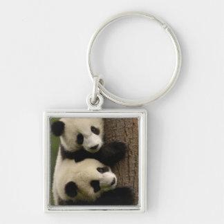 Giant panda babies (Ailuropoda melanoleuca) 2 Silver-Colored Square Keychain