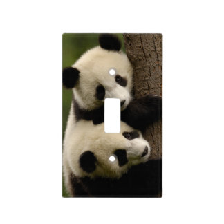 Giant panda babies (Ailuropoda melanoleuca) 2 Light Switch Cover