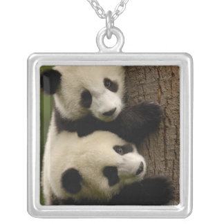 Giant panda babies (Ailuropoda melanoleuca) 2 Silver Plated Necklace
