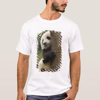 Giant panda babies Ailuropoda melanoleuca) 2 T-Shirt