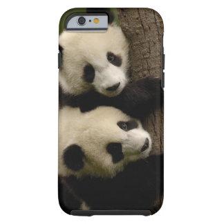 Giant panda babies (Ailuropoda melanoleuca) 2 Tough iPhone 6 Case