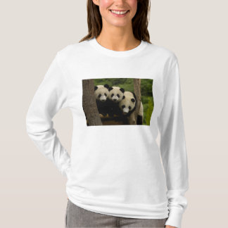 Giant panda babies Ailuropoda melanoleuca) 3 T-Shirt