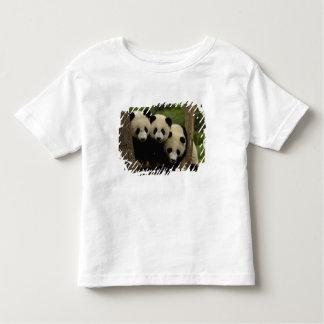 Giant panda babies Ailuropoda melanoleuca) 3 Toddler T-shirt