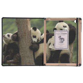 Giant panda babies Ailuropoda melanoleuca) 4 Covers For iPad