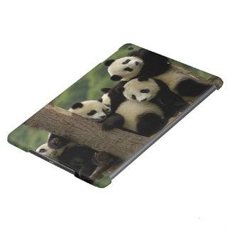Giant panda babies Ailuropoda melanoleuca) 4 iPad Air Cover