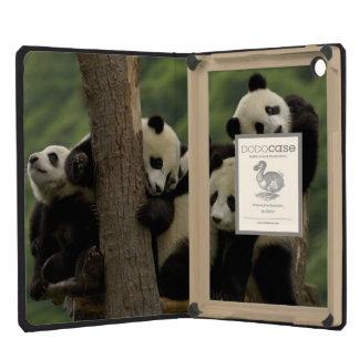 Giant panda babies Ailuropoda melanoleuca) 4 iPad Mini Retina Case